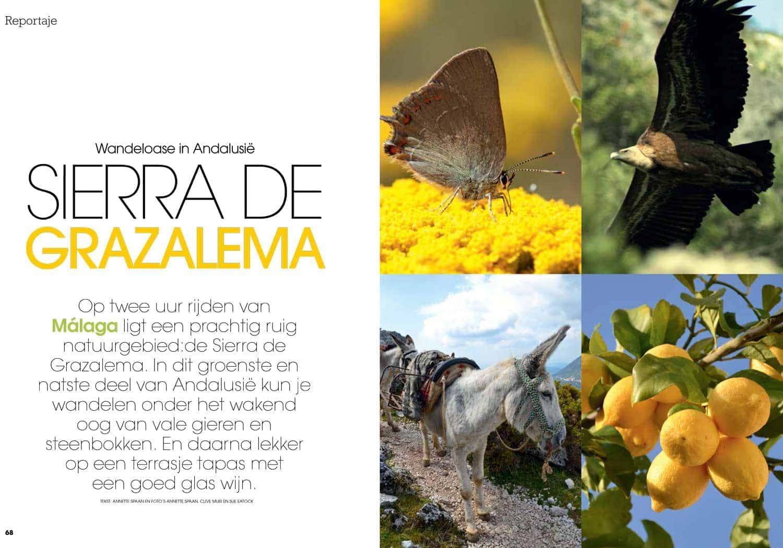 Espana Y Mas Zomernummer 2014